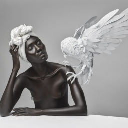 Visioni sul concetto di Bellezza – Justin Dingwall